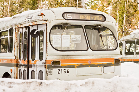 ND_D19_WinnipegElectricBus.jpg